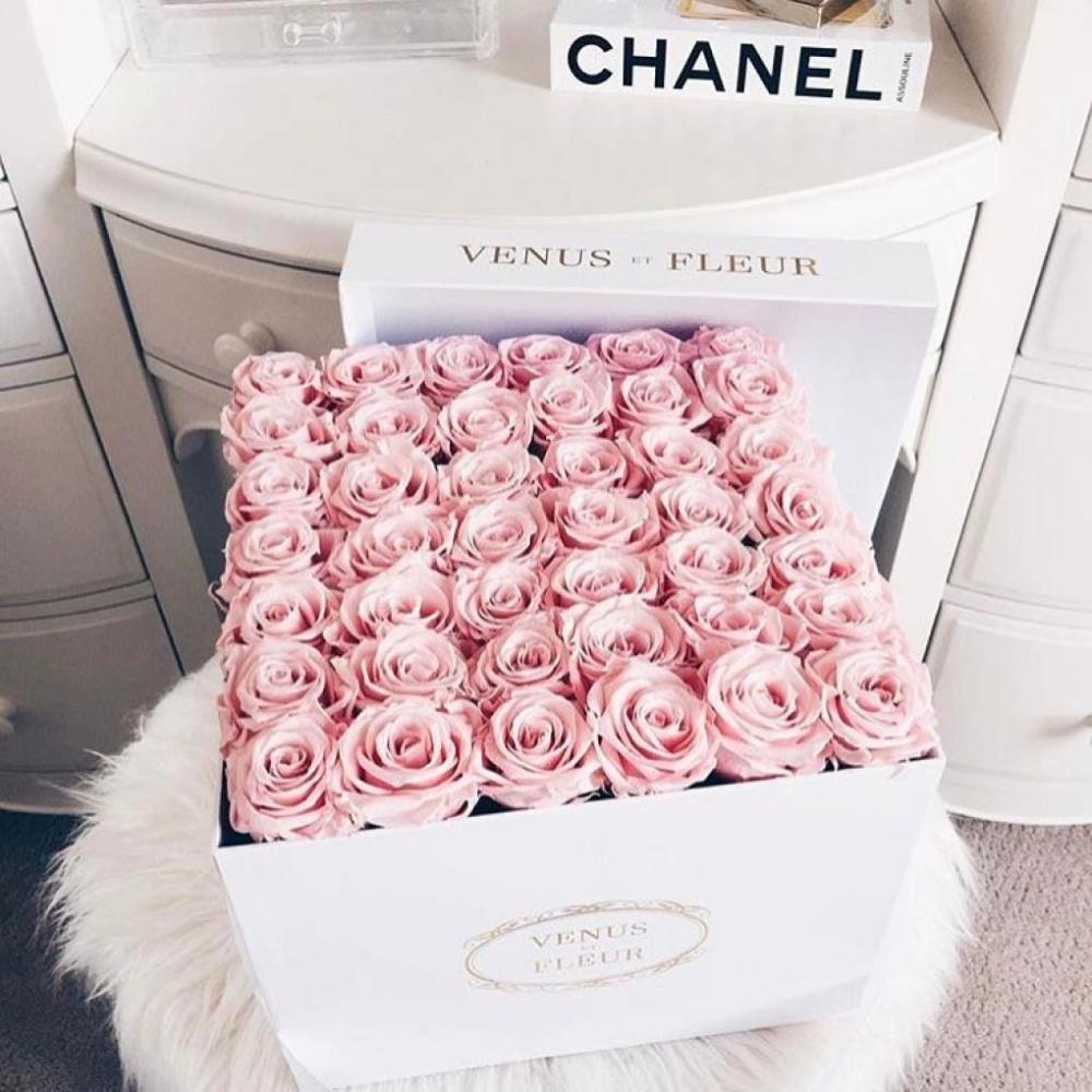Inspiration, Photography, Roses, Romantic, Irish Blogger